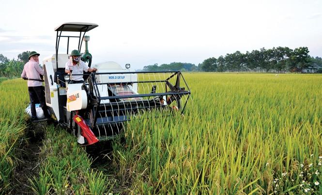 Cơ giới hóa sản xuất nông nghiệp ở tỉnh Vĩnh Phúc. Ảnh: Nhật Minh.