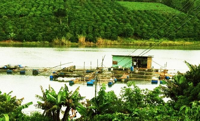 Vùng quê trù phú của người Hà Nội trên cao nguyên.