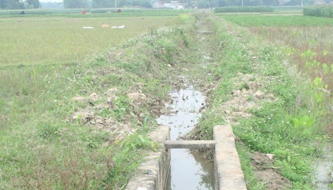 Khu vực kênh nơi xác định là địa điểm Hàn Đức Long gây án
