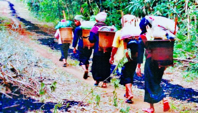 Sơn nữ gùi sim về làng