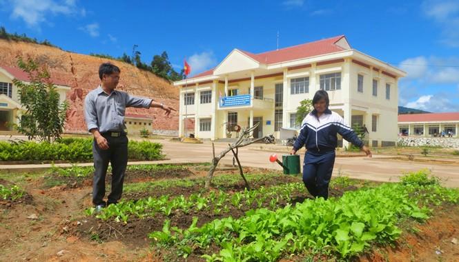 Thầy trò vùng cao cùng trồng rau cải thiện bữa ăn