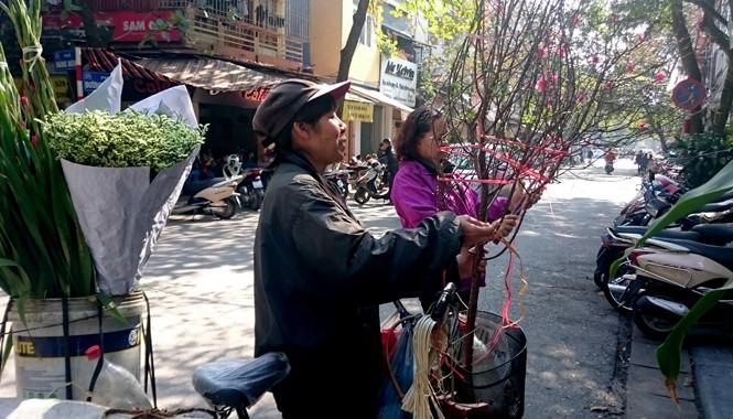 Đào được rao bán trên phố cổ Hà Nội (ảnh chụp sáng 29/1 trên phố Hàng nón). Ảnh: Ngọc Châu