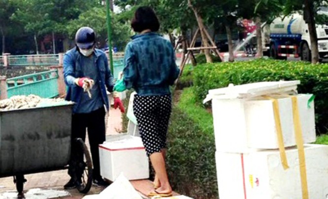 Hình ảnh đôi nam nữ lấy cá chết ở hồ Tây cho vào thùng xốp. Ảnh người dân cung cấp
