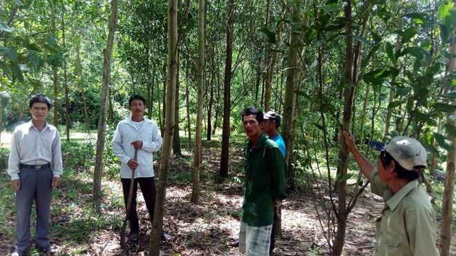 Người dân xã Cam Tuyền lo lắng, bức xúc trước thông tin thu hồi đất rừng. Ảnh: H.T