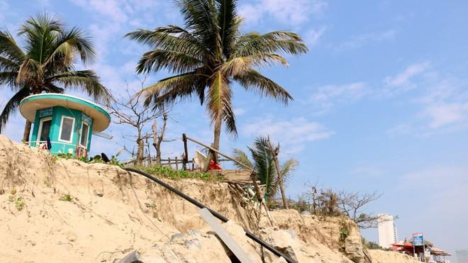 Bãi biển Mỹ Khê bị sạt lở tan hoang.