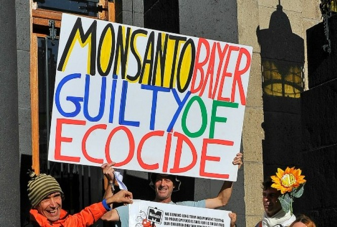 Những người biểu tình phản đối Monsanto bên ngoài nơi diễn ra phiên tòa về Monsanto ảnh: Getty Images