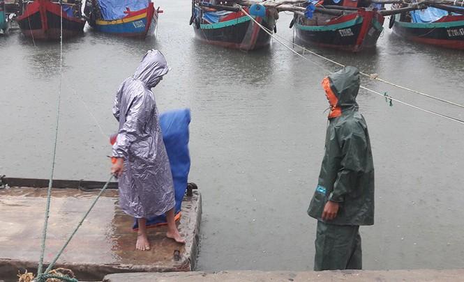 Người dân đưa tàu thuyền vào neo đậu tại cảng cá Thạch Kim sáng nay.