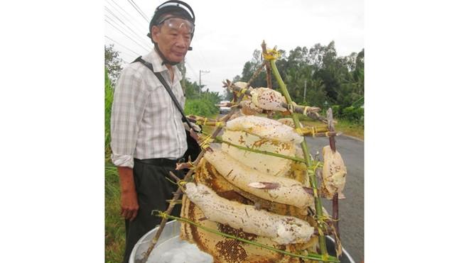 Mùa khô là thời điểm mùa khai thác mật ong chính vụ. Do ong tại các vùng rừng miền Tây không còn nhiều nên người làm nghề rủ nhau sang biên giới Campuchia khai thác, vì đây là vùng có nhiều ong mật.
