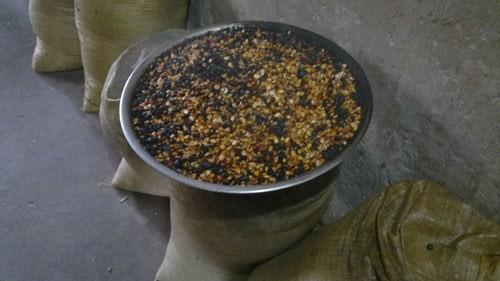 Bà Nhường dùng hạt bắp rang để chế biến thuốc chữa bệnh