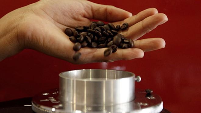 Protein trong cà phê có tác dụng tương tự như chất giảm đau morphine. Ảnh minh họa: Reuters