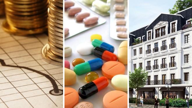 Vimedimex Group hoạt động chính trong lĩnh vực Dược phẩm, Y tế, Tài chính và Bất động sản