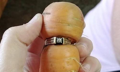 Chiếc nhẫn thất lạc từ năm 2004 của cụ Grams. Ảnh: Guardian.