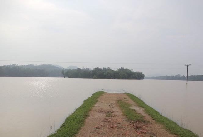 Nước dâng lên nhanh tại các vùng chiêm trũng thuộc các huyện hạ lưu sông Lam.