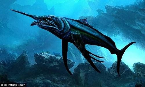 Hóa thạch cá kiếm dài ba mét được tìm thấy ở ngoại ô bang Queensland, Australia. Ảnh: Patrick Smith.
