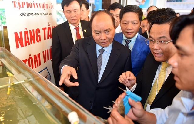 Thủ tướng tham quan chất lượng tôm giống của tập đoàn Việt - Úc.