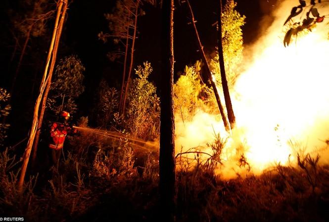 Thảm họa cháy rừng ở Bồ Đào Nha, 57 người thiệt mạng