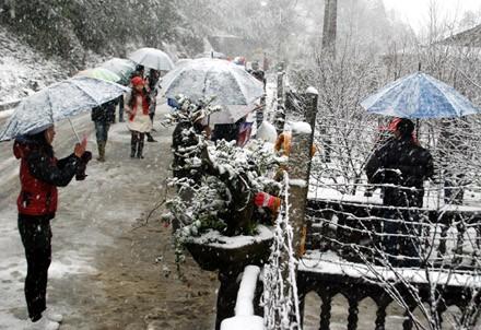 Du khách miền xuôi thích thú thưởng thức hiện tượng tuyết rơi ở Sa Pa hồi cuối năm 2013.