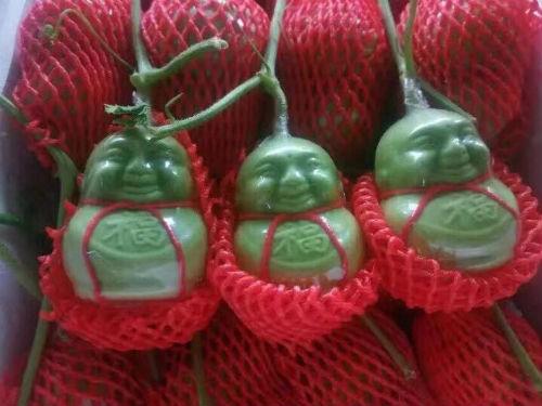 """Dưa lê Thần tài """"tí hon"""" có xuất xứ từ Trung Quốc giá dao động khoảng 35.000 - 50.000 đồng một quả"""