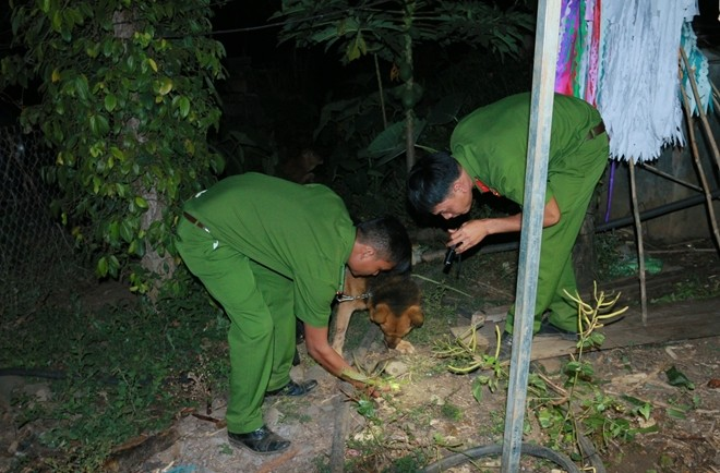 Cơ quan điều tra điều động chó nghiệp vụ tìm vật dụng của nạn nhân tại nhà nghi can