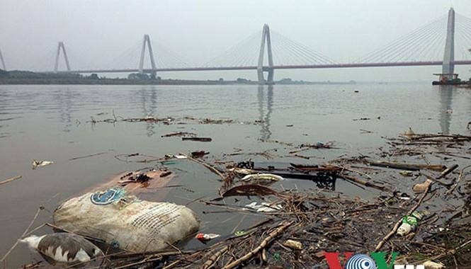 Rác thải, xác động vật chết... bị vứt đầy trên mặt sông. Ảnh chụp tại chân cầu Nhật Tân.