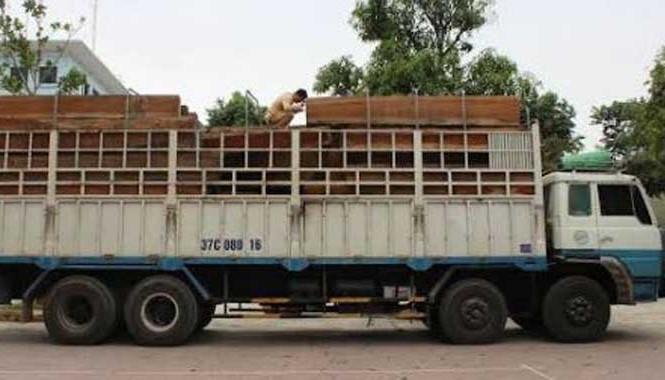 Xe tải chở gỗ quá tải 300%.