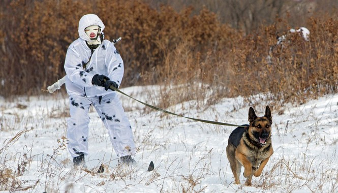Đơn vị tác chiến bộ binh có vũ trang tại Bắc Cực của Nga đang được huấn luyện tại vùng Amur. Trong ảnh là một học viên đang trong đợt huấn luyện (Sputnik News).