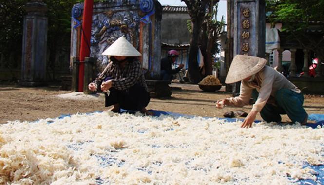 Người dân huyện đảo Lý Sơn phơi rau câu vừa được khai thác từ vùng biển Hoàng Sa mang về chuẩn bị bán ra thị trường dịp Tết. Ảnh: Trí Tín/ VnExpress
