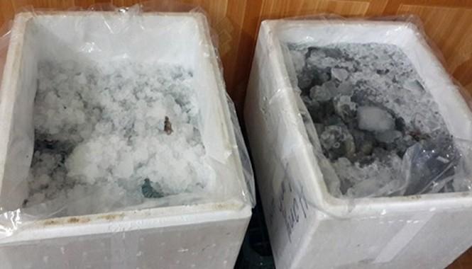Tôm sú đông lạnh là một trong các mặt hàng thường bị các gian thương bơm bột để tăng trọng lượng.
