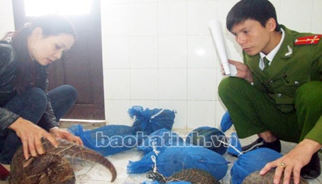 Đối tượng Nguyễn Thị Hương cùng số tê tê bị tạm giữ tại Công an huyện Đức Thọ.