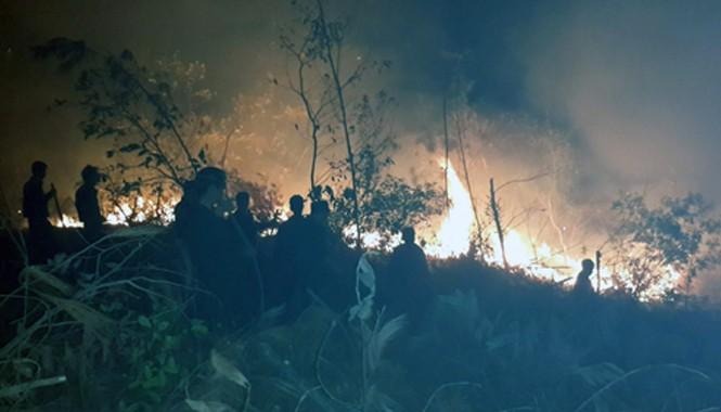 Hiện trường vụ cháy rừng Ảnh: Phạm Phong.