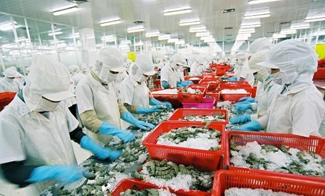 EU cảnh báo nhiều lô hàng thủy sản Việt Nam nhiễm kim loại nặng vượt mức cho phép.