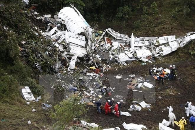 Hiện trường vụ tai nạn máy bay. Nguồn: AP/TTXVN.