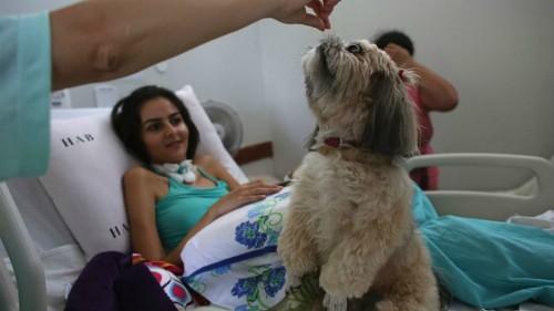 Bệnh nhân 20 tuổi Gleisiane Oliveira trên giường bệnh bên cạnh chú chó Mille. Ảnh: FoxNews.