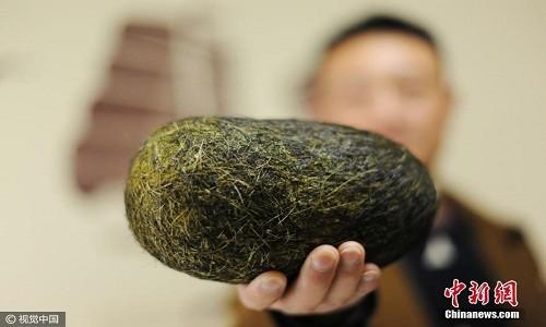 Quả trứng nặng hơn 1,2 kg được tìm thấy trong bụng lợn. Ảnh: China News.