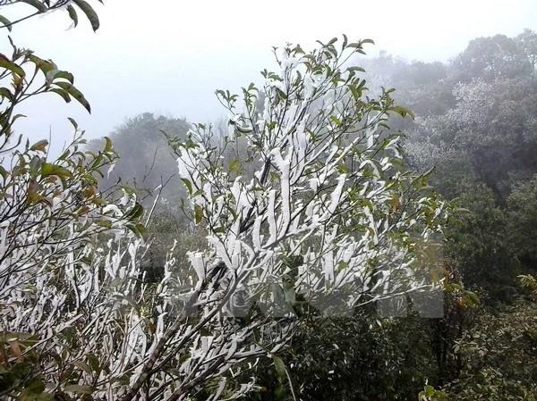 Băng tuyết trên đỉnh Mẫu Sơn. Ảnh: TTXVN.
