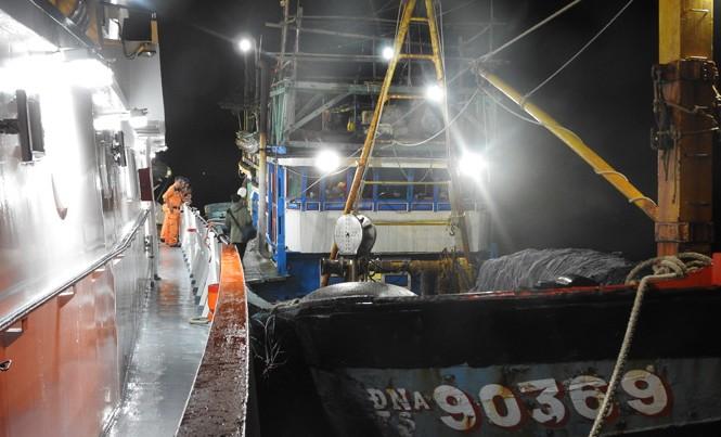 Cứu tàu cá hỏng máy trôi dạt tại Hoàng Sa