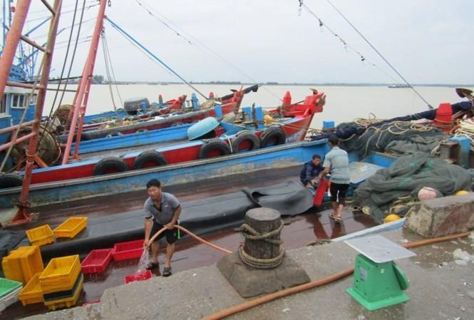 UBND tỉnh Nghệ An sẽ lệnh cấm biển vào sáng ngày 13/9.