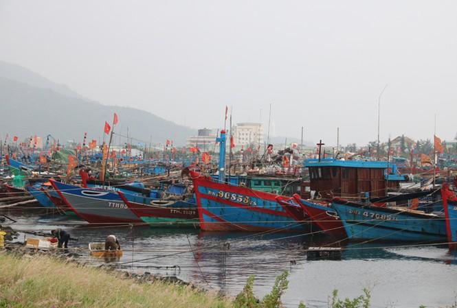 Hàng ngàn phương tiện tàu thuyền Đà Nẵng và khu vực lân cận đã về âu thuyền Tho Quang (Sơn Trà, Đà Nẵng) để trú tránh bão. Ảnh: Nguyễn Thành.
