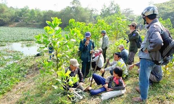 Đà Nẵng: Dân đổ xô lên núi săn rùa lạ bán hàng trăm triệu đồng