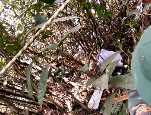 Nhiều mảnh vỡ máy bay EC130 T2 văng khắp nơi ở hiện trường. Ảnh:CTV