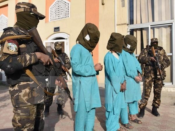 Lực lượng an ninh Afghanistan bắt giữ các tay súng Taliban trong chiến dịch truy quét khủng bố ở Jalalabad ngày 20/12. (Nguồn: EPA/TTXVN)