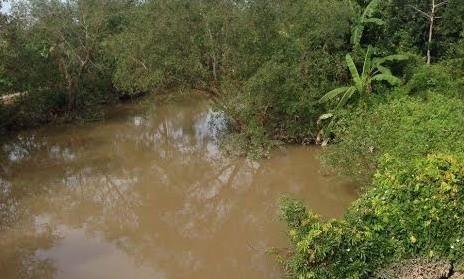 Nhánh sông nơi phát hiện thi thể nạn nhân Nguyễn Hoài Hận.