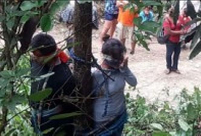 Ba mẹ con bị dân làng trói cây đầy kiến độc vì nghi ăn trộm xe.