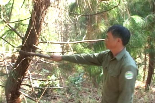 Nhân viên Trịnh Xuân Khấm trong một lần tuần tra bảo vệ rừng. ẢNH: Cơ quan Công an cung cấp.