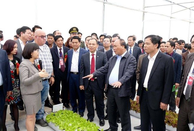 Thủ tướng Nguyễn Xuân Phúc thăm quan mô hình sản xuất nông nghiệp công nghiệp cao ở tỉnh Hà Nam.