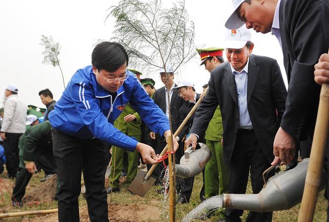 Các đại biểu trồng cây phi lao gây rừng phòng hộ