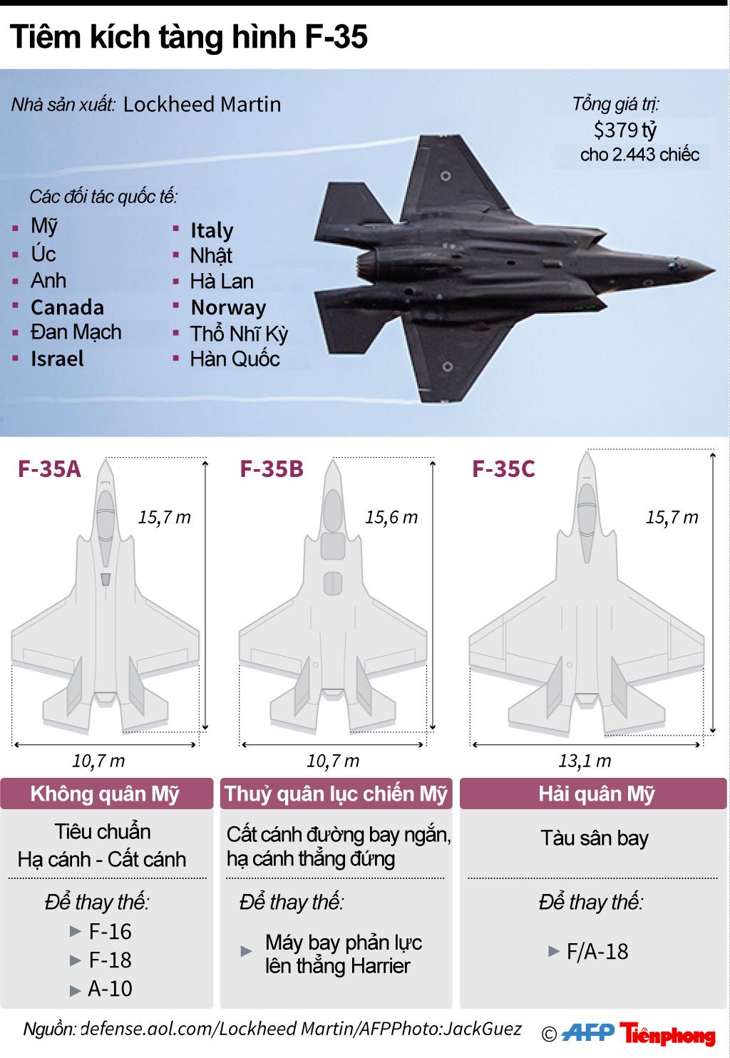 [ĐỒ HỌA] Mỹ triển khai 10 tiêm kích F-35 đầu tiên tới Nhật Bản - ảnh 1