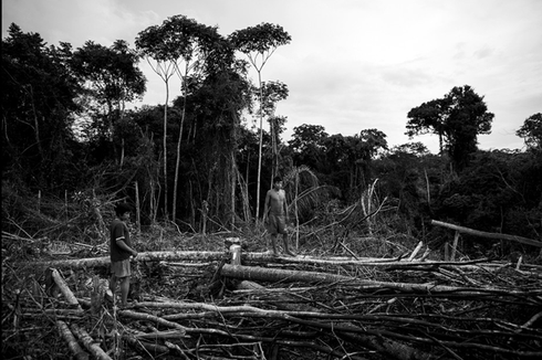 Cuộc sống hoang dại của bộ lạc ít người nhất hành tinh - ảnh 10