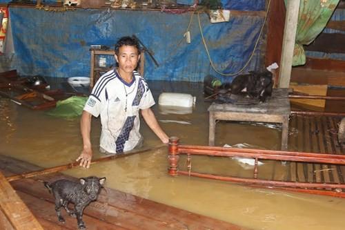 Báo Tiền Phong kêu gọi ủng hộ đồng bào bị lũ lụt - ảnh 1