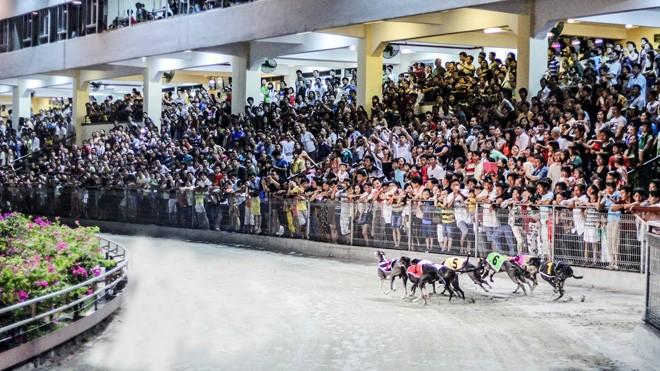 Cho phép người Việt cá cược thể thao: Cần công khai người chơi lớn - ảnh 1